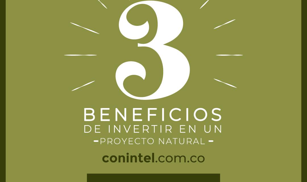 https://proyectofrutosverdes.com/wp-content/uploads/2020/11/II17_1-1080x640.png